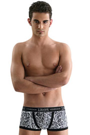 EROS VENEZIANI trunks at oboy.com