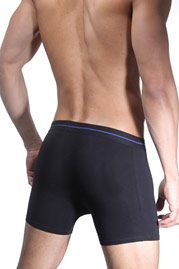 BRUNO BANANI POWER COTTON 1343 trunks 3 pieces at oboy.com