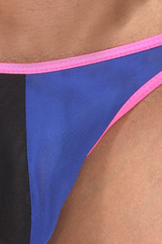 COSMOS COLORS brief at oboy.com