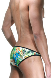 COSMOS COLORS hip brief at oboy.com