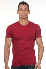 FIOCEO t-shirt round neck at oboy.com