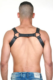 MISTER B 655 Neoprene Bulldog Harness at oboy.com
